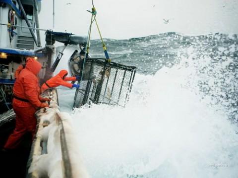 Суровая ловля рыбы на Аляске