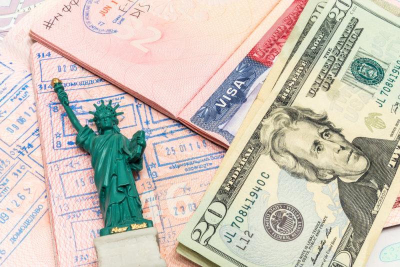 Виза и доллары США
