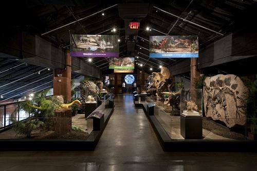 музей естествознания