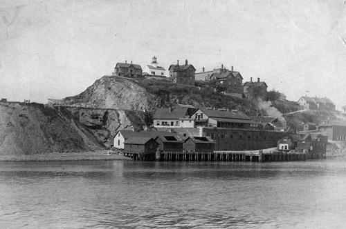 постройки на острове 1895 год