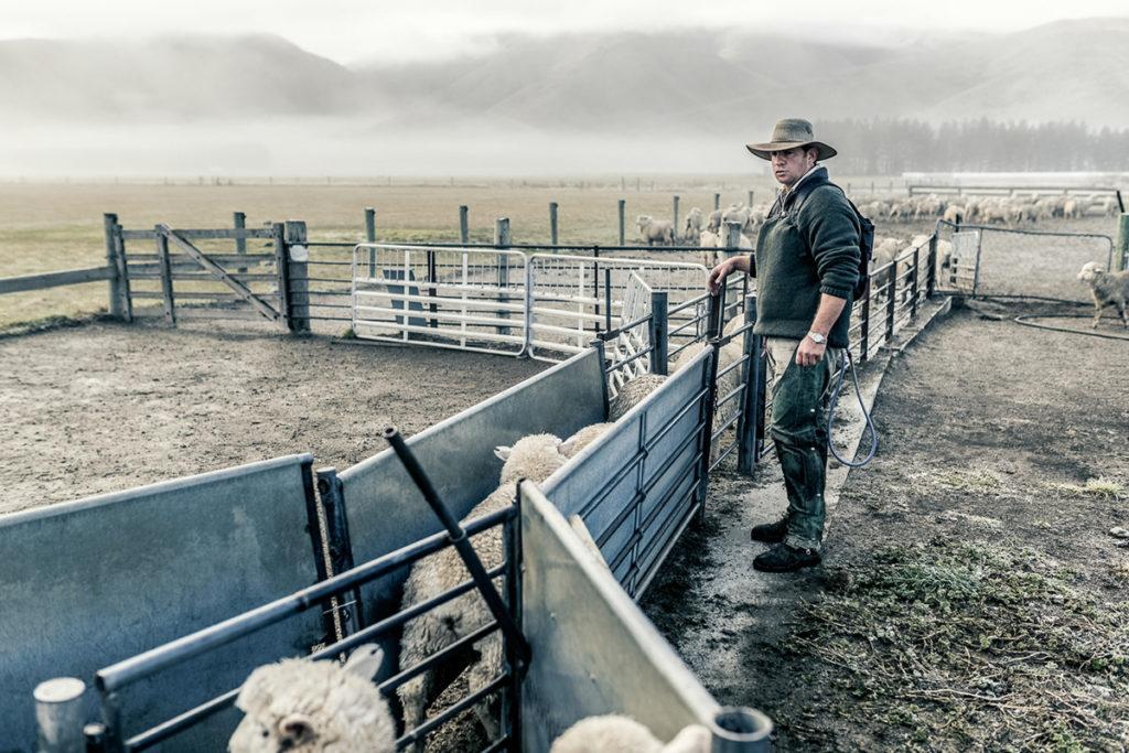 Фермерское сельское хозяйство США и Канады